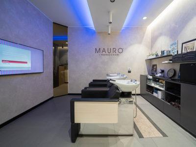 mauro_imm18